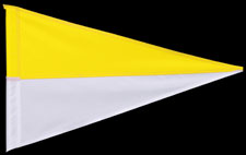 YELLOW WHITE PENNANT